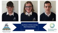 Excellence in Online Learning
